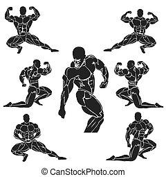 vector illustration of bodybuilding