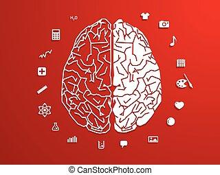 vector illustration of brain