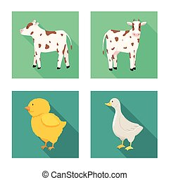 Vector illustration of breeding and kitchen icon. Collection of breeding and organic vector icon for stock.