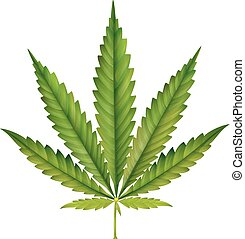 Cannabis leaf cartoon - Vector illustration of Cannabis leaf...