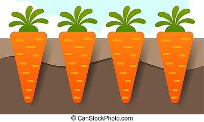 Vector illustration of Carrot plant with roots underground
