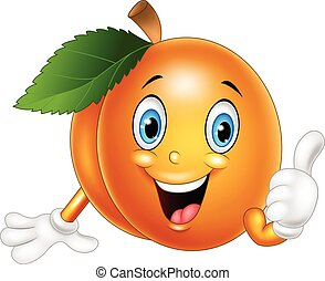 Cartoon apricot giving thumbs up - Vector illustration of...