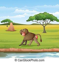 Cartoon baboon in the Savannah