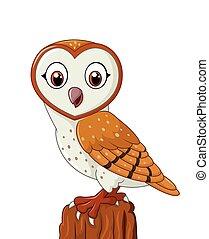 Cartoon barn owl isolated