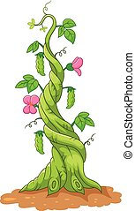Cartoon bean stalk - Vector illustration of Cartoon bean ...