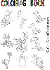 Cartoon bird coloring book