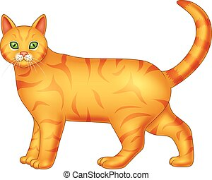 Cartoon cat isolated on white background