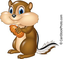 Vector illustration of Cartoon chipmunk holding peanut isolated on white background