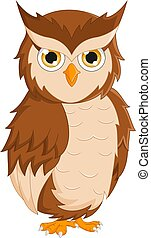 Cartoon cute owl isolated on white background