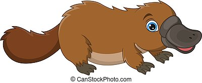 Cartoon cute platypus isolated on white background