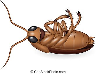 Vector illustration of Cartoon dead cockroach on white background