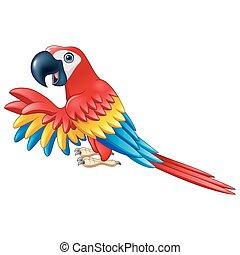 Cartoon funny macaw isolated