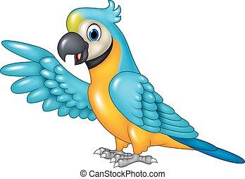 Cartoon funny macaw presenting