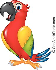 Cartoon funny parrot isolated - Vector illustration of...