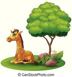 Cartoon giraffe sitting under a tree on a white background