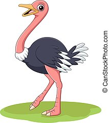Cartoon happy ostrich isolated on white background