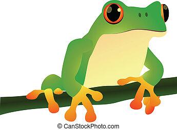 cartoon illustration of a frog sitt