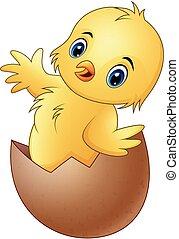 Cartoon little baby chicken in the broken egg shell