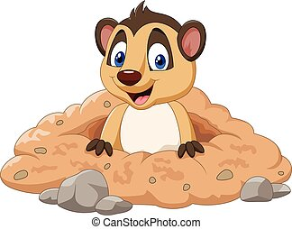 Cartoon meerkat in a hole - Vector illustration of Cartoon ...