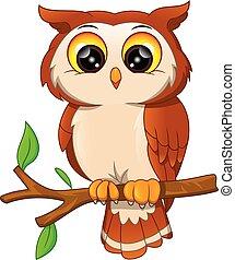 Cartoon owl bird on a white background