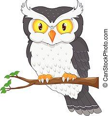 owl bird posing on the tree