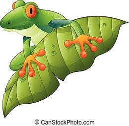 Cartoon red-Eyed Amazon Tree Frog o - Vector illustration of...