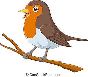 Cartoon robin bird sitting on a tree branch