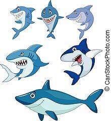 Cartoon shark collection set