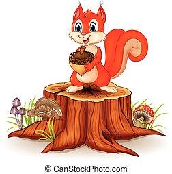 Cartoon squirrel holding pine cone - Vector illustration of...