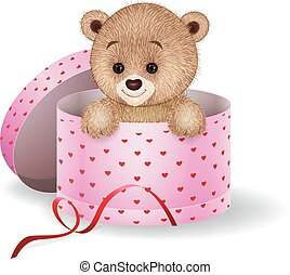 Cartoon teddy bear in the gift box