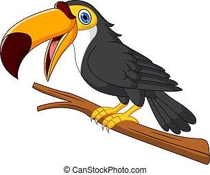 Cartoon toucan bird on tree branch