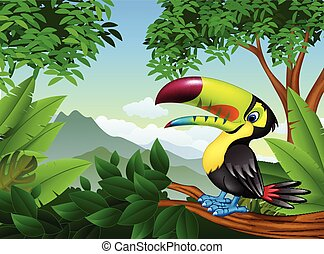 Cartoon toucan on a tree branch