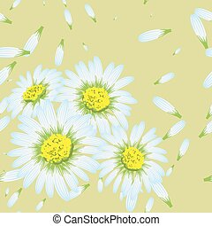 Vector illustration of chamomiles. (Seamless flowers pattern)