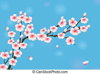 Vector Illustration Of Cherry Blossom
