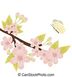 cherry-tree branch - Vector illustration of cherry-tree...