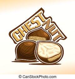 Vector illustration of chestnut