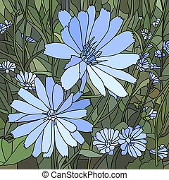 Vector illustration of chicory. - Vector mosaic with large...