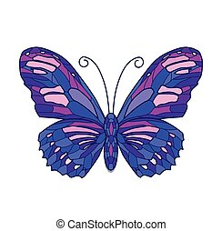 Vector illustration of color butterfly on white background