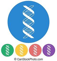 Vector illustration of color DNA