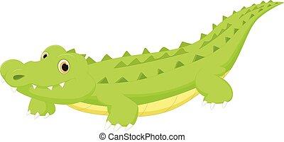 Crocodile cartoon - vector illustration of Crocodile cartoon