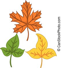 cute autumn leaves cartoon colorful