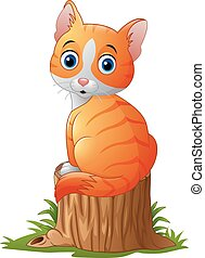 Cute baby cat sitting on tree stump