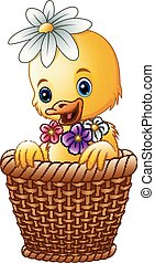 Cute baby duck inside a wicker basket with colorful flowers