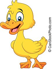Cute baby duck posing isolated