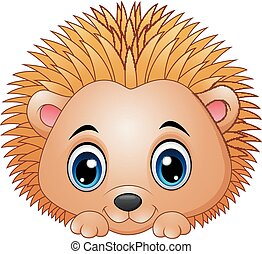 Cute baby hedgehog isolated on a white background