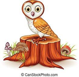 Cute barn owl sitting on tree stump