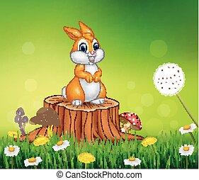 Cute bunny on tree stump