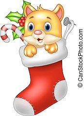 Cute cartoon cat in the Santa Claus