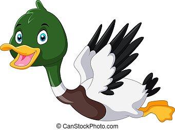Cute cartoon Mallard duck flying