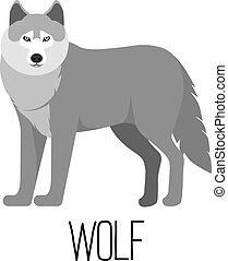 Vector illustration of cute cartoon wolf isolated